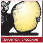 crocchiasmin